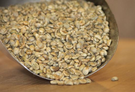 cà phê moka, cafe moka, cafe sạch, cafe xuất khẩu